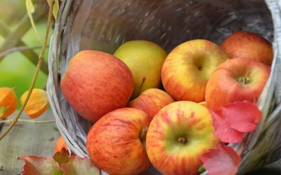Pomme et diabète de type 2
